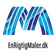 logo_danske_malermestre_blå